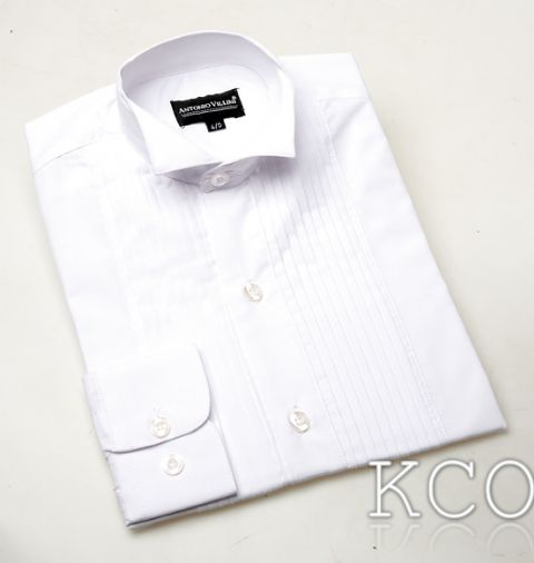Wing Collar Pleated Shirt-White